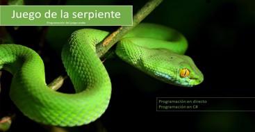 Ejercicio programación como aprender a programar el juego de la serpiente o snake en dot net
